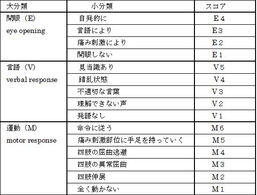 意識障害表4