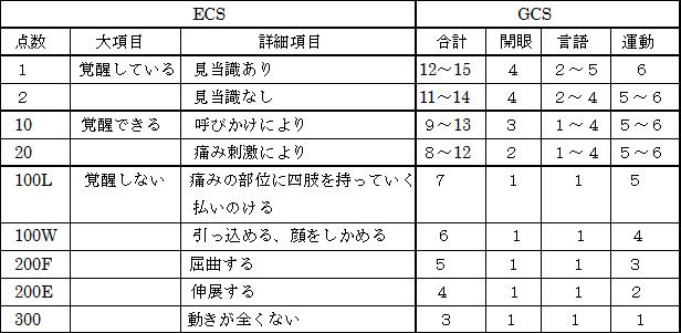 ECSとGCSの点数比較